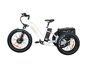 Amazon.com: Kasen Electric Tricycle - Cesta trasera de ...