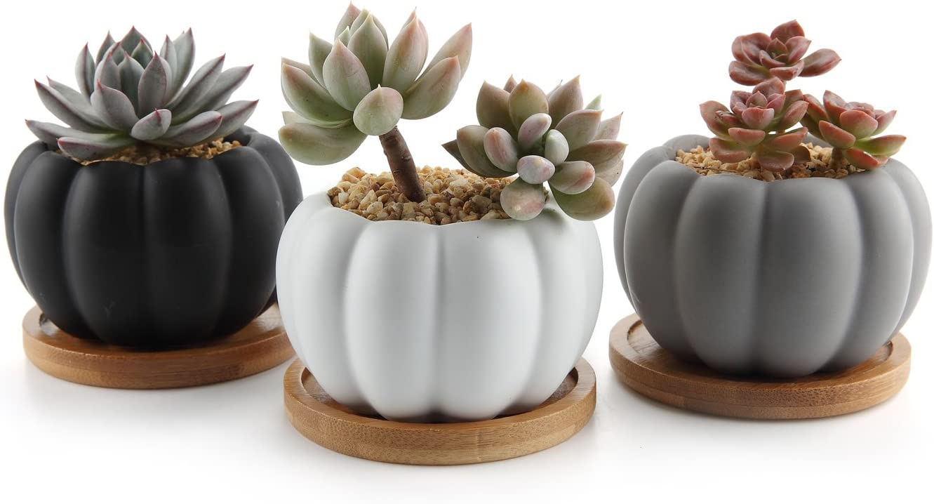 T4U 3.3 Inch Ceramic Modern Pumpkin Design Succulent Plant Pot Cactus Plant Pot Container with Bamboo Tray – Full Color Set of 3