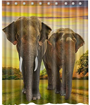 Image Unavailable Not Available For Color Shower Curtain Elephant
