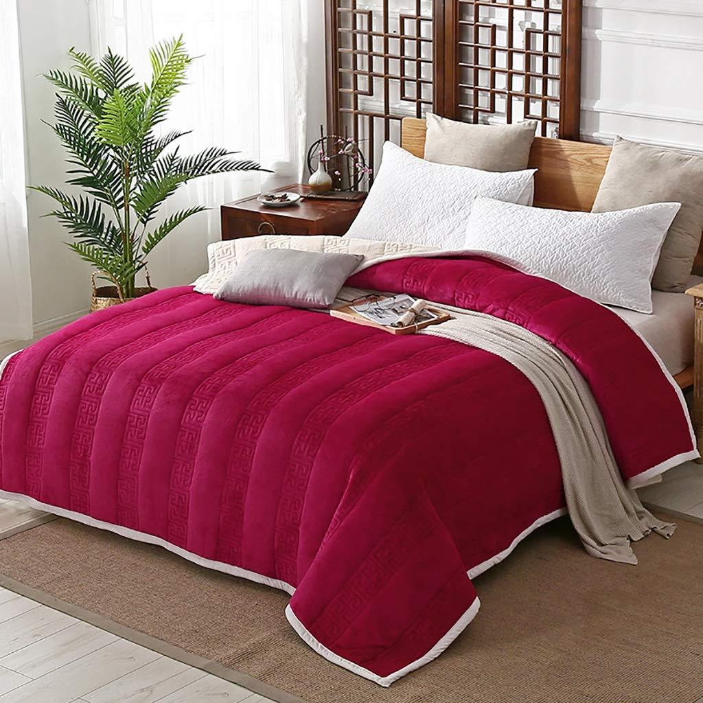 WJ ブランケットグレー、スーパーソフトふわふわした暖かいソリッドベッドを投げ、ソファ、ラグジュアリーマイクロファイバーブランケット、5色 (色 : Red, サイズ さいず : 150 * 200cm) B07HJ546QS Red 150*200cm