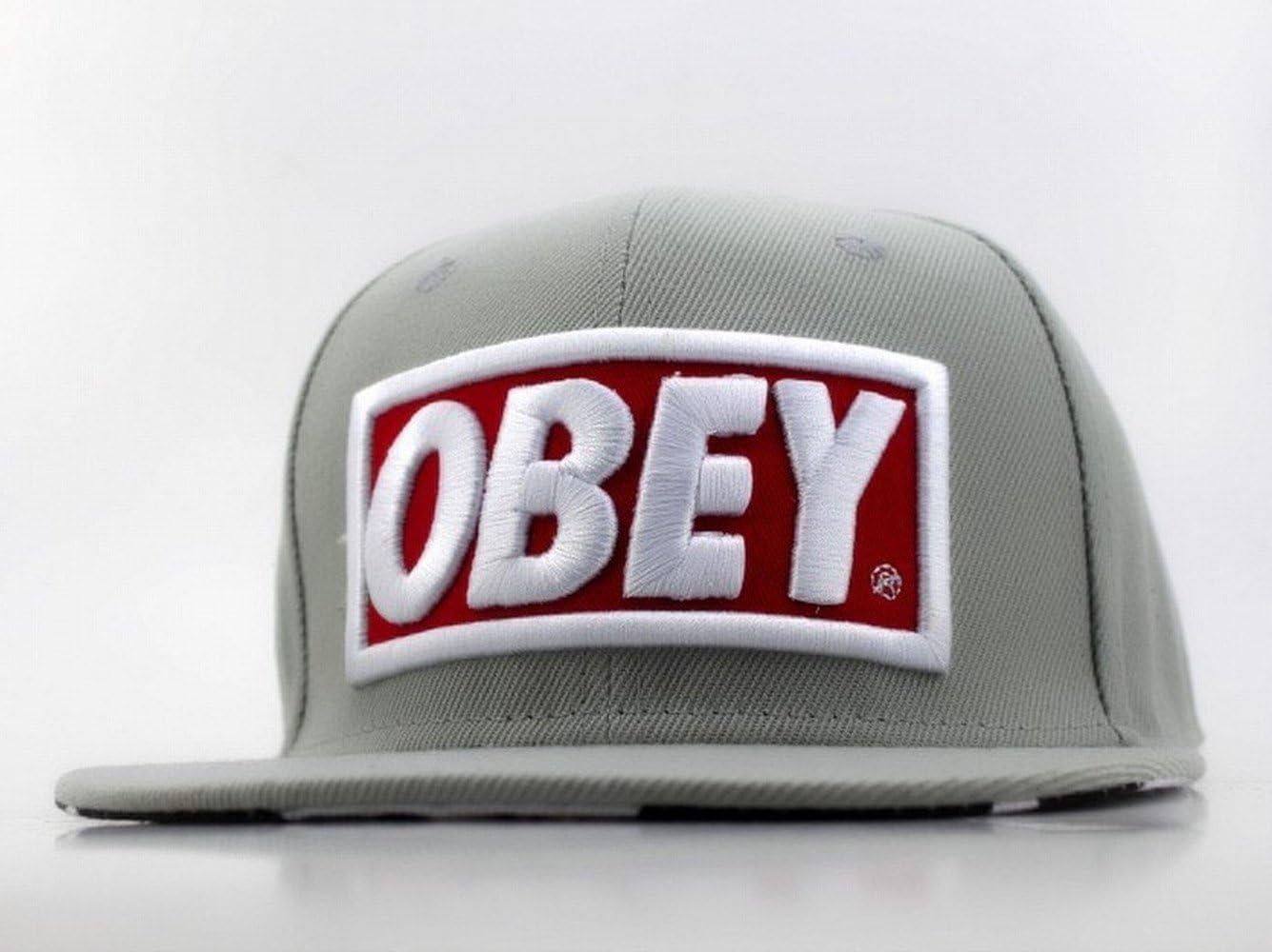 Obey Snapback Cap Hat Gorra grey Face Edition Last Kings LK Jay-Z ...