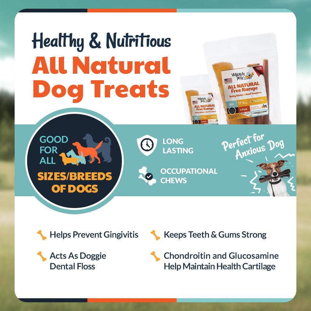 WyldLife Pets American Bully Sticks & Beef Tendon Combo – Gourmet Grass Fed Dog Treats Grain Free – Training & Puppy Dental Chews w/Zero Chemicals, Hormones or Preservatives