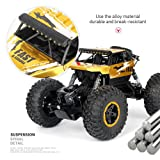 Birdfly Cross-Country RC Climbing Car 1/18 2.4G 4WD 15KM/h Alloy High Tire Off-Road Monster Truck Radio Contral Toy Car