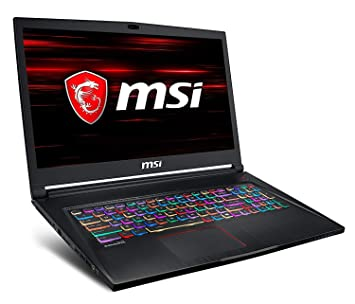 "MSI GS73 Stealth 8RE-042ES - Ordenador portátil Gaming 17.3"" 4K IPS (Intel"