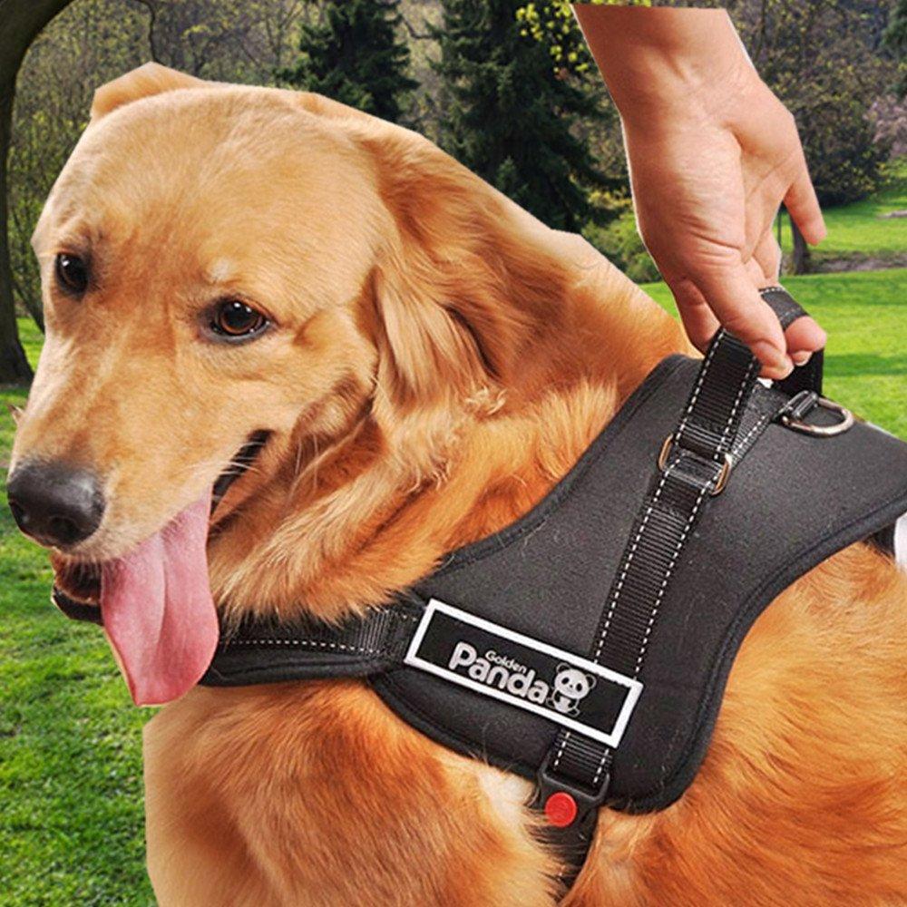 Amazon.com : Dog Harness, PYRUS K8 No Pull Harness Dog Leash Padded