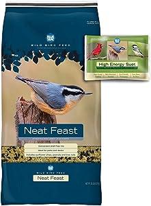 BLUE SEAL Neat Feast Bird Seed & High Energy Suet Cake Bundle