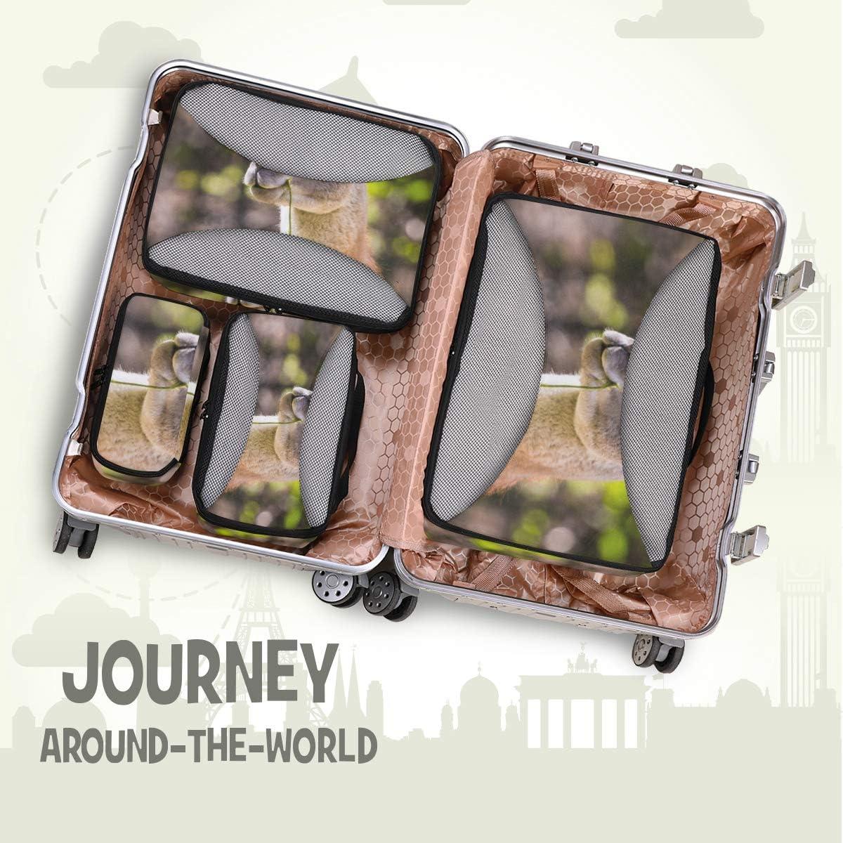 4 Set Packing Cubes Travel Luggage Packing Organizers Llama Portrait