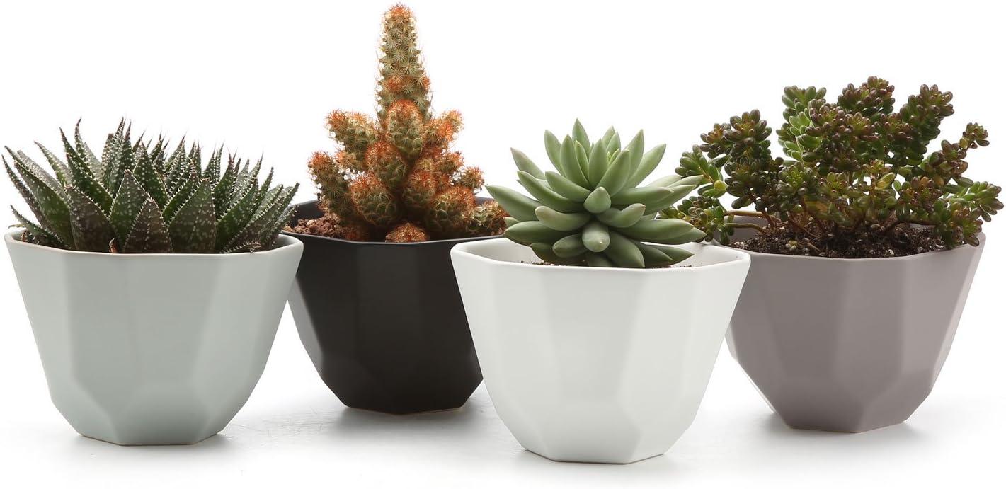 T4U 5 Inch Ceramic Geometric Pattern Semi Luster Surface Set Succulent Plant Pot Cactus Plant Pot Flower Pot Container Planter Full Colors Package 1 Pack of 4