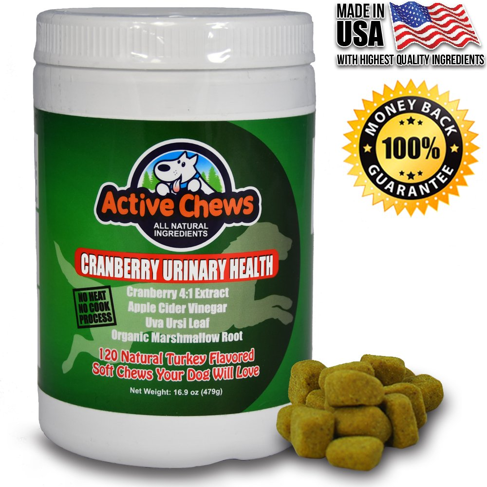 Active Chews Cranberry Chews for Dog UTI Treatment - Relieves Dog Incontinence and Provides Bladder and Kidney Support for Dogs - 120 Chews