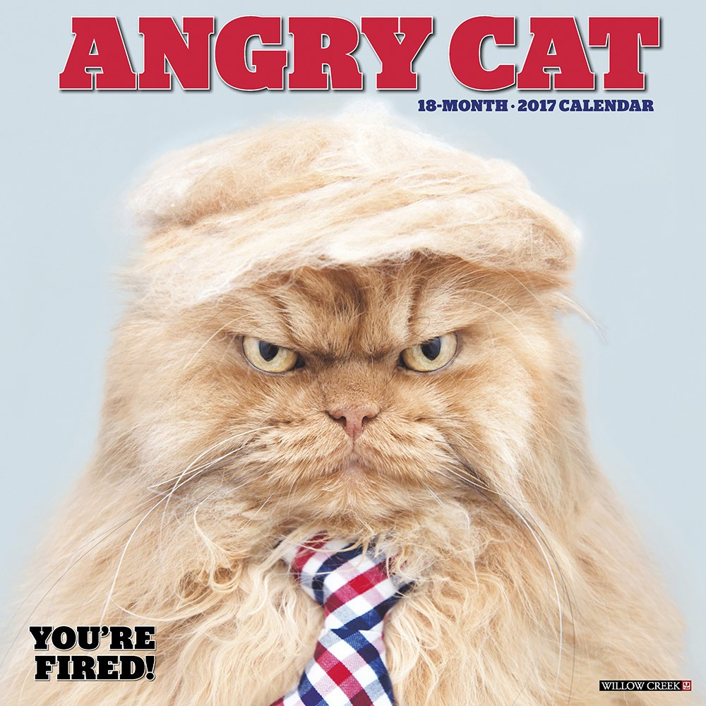 Read Online Angry Cat 2017 Wall Calendar ebook