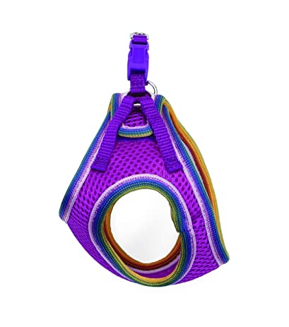 71IVmhqDD2L._SY463_ step in dog harness accent crystal dog harness step in \u2022 wiring  at n-0.co