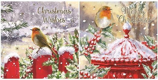 Paquete de 12 Square tarjetas navideñas - tradicional Robin ...
