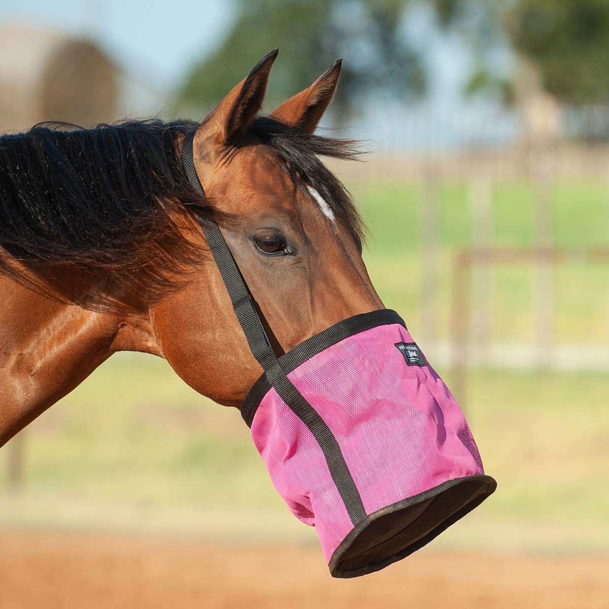 Cashel Feed Rite Bag Draft (Horse, Pink) by Cashel