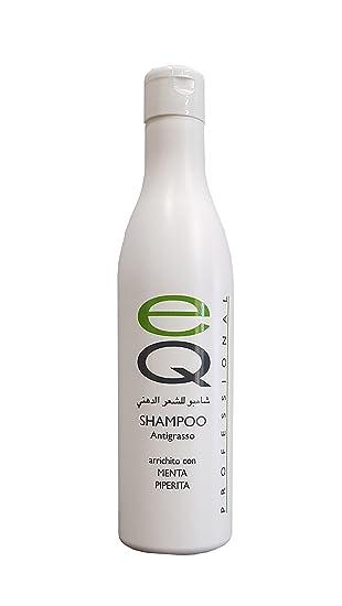 Das Beste Shampoo Fettiges Haar Mit Pfefferminze 500 Ml Profi