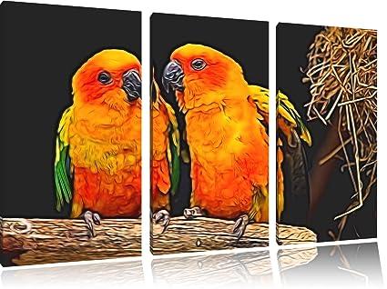 Dos colorida sol loros Newart de 3 piezas lienzo 120 x 80 ...