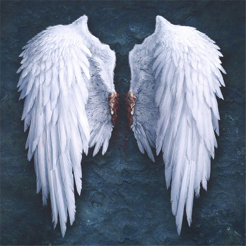 CanViUK White Angel Wings Oil Painting Wall Art Canvas Modern Living Room Decor CanVivi
