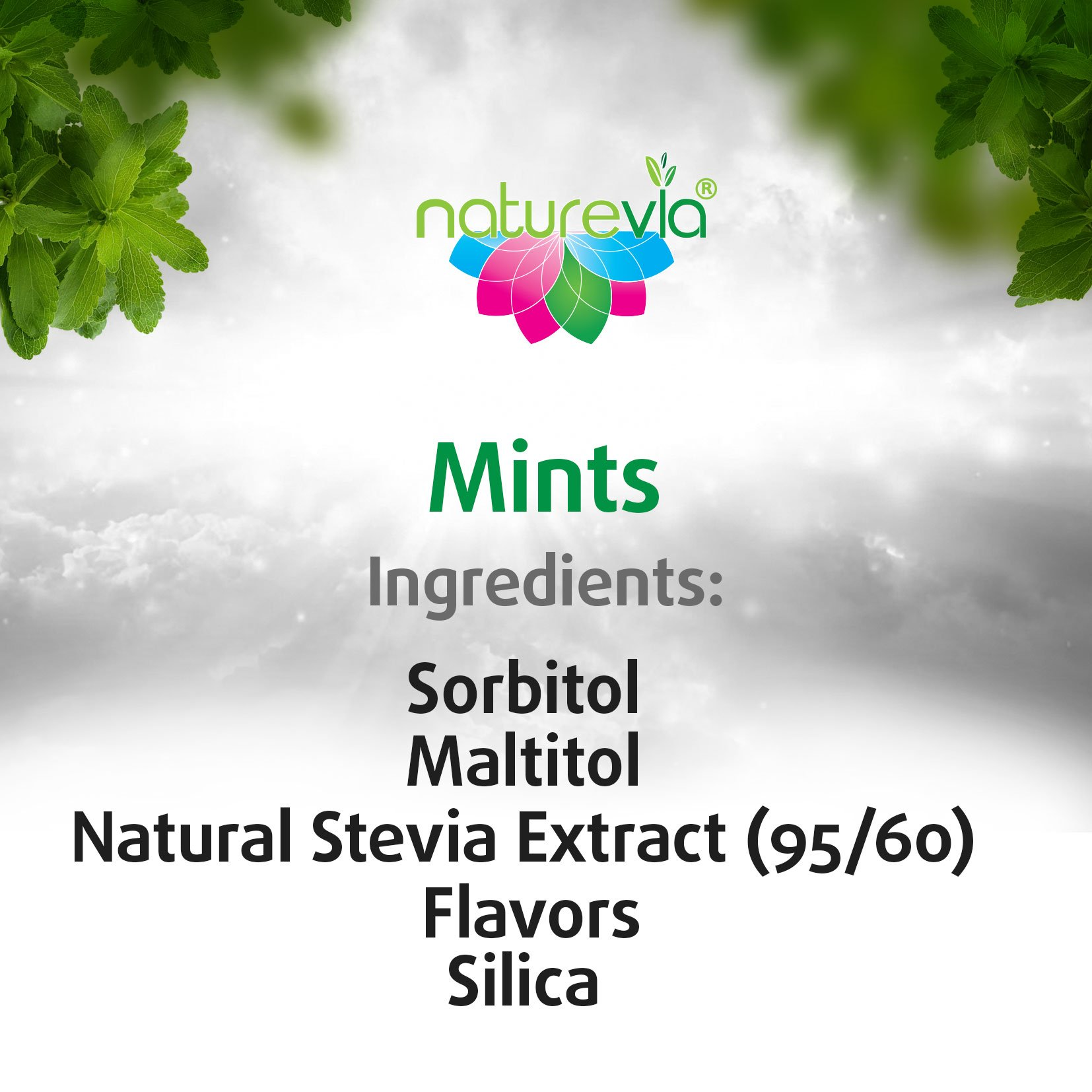 Sugar-Free Mints - Cinnamon Flavor (12 PACK-100 tabs 18 g): Mints Naturally Sweetened with Stevia, Free of: Sugar, Carbs, Calories, Glycemic Index, Aspartame ; Dentist Recommended by Naturevia (Image #6)