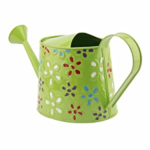 Nuha 2.5 litres Hand Painted Metal Watering Can - Rust Free, Gift, Gifting, Garden, Gardening, Tools