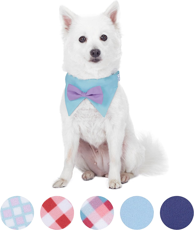 Neck 37cm-50cm Adjustable Collars for Dogs Blueberry Pet Soft /& Comfy Scottish Hudson Blue Plaid Tartan Style Designer Padded Dog Collar Medium