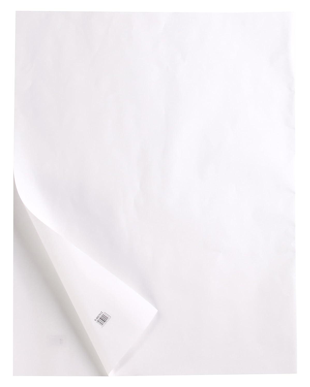 Clairefontaine 975145C Ries Transparentpapier (50 x 65 cm, 10 Blatt, 400 g, ideal für technische Zeichnen) transparent B06ZYRPKP2  | Billig