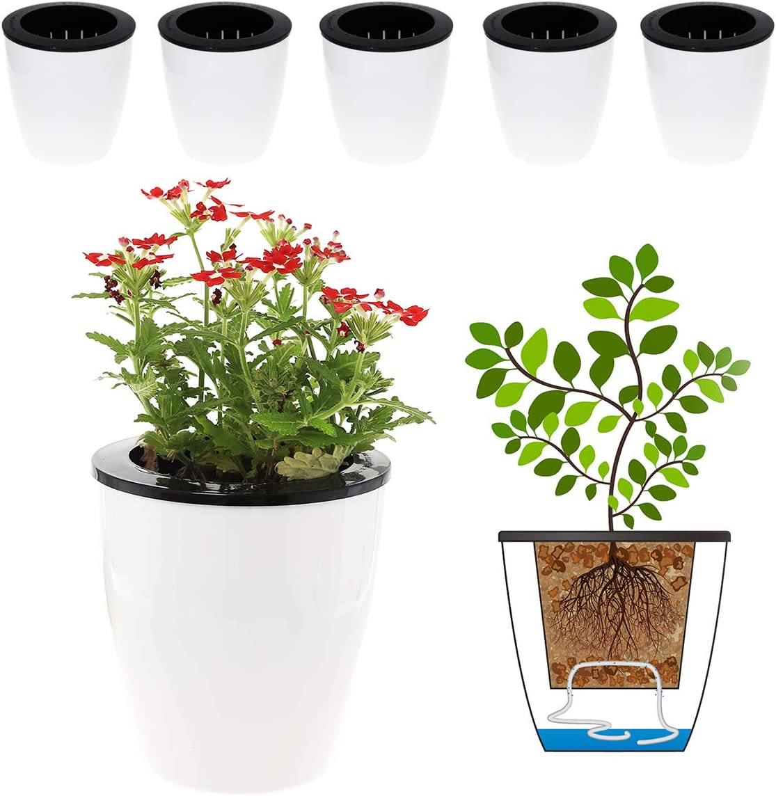 DeEFL 3 Packs 6.9 Inches Clear Self Watering Planters Large Plastic Self Watering Pots Wick Flower Pots for Indoor Plants Ocean Spider Plant Clear and White Orchid African Violet