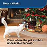 PetSafe ScatMat Indoor Pet Training Mat for Dogs