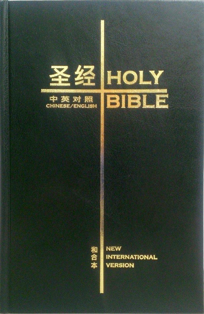 NIV ENGLISH BIBLE EPUB