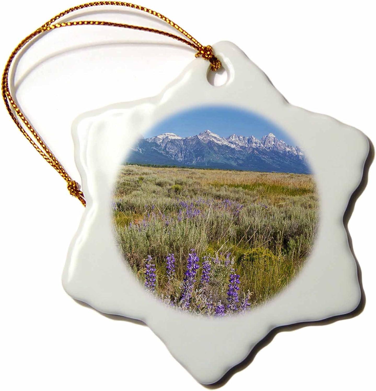 3dRose ORN_97223_1 Grand Tetons Mountain Range, Jackson Hole, Wyoming-US51 BBA0022-Bill Bachmann-Snowflake Ornament, Porcelain, 3-Inch