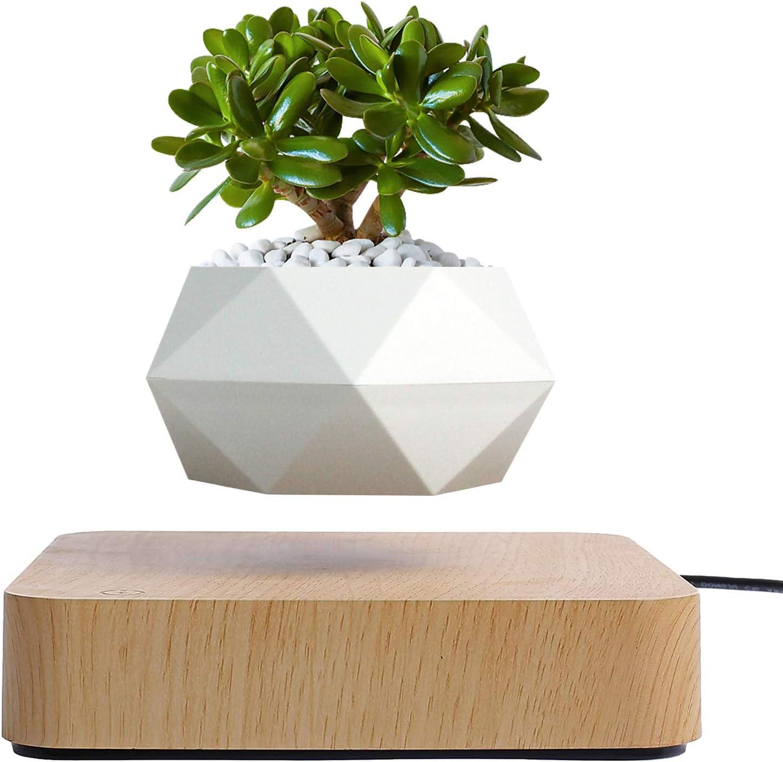 Levitating Air Bonsai Plant Pot, Floating Flower Plant Pot,Magnetic Levitation Suspension Floating Pot for Air Plants,Potted Plant Home Desk Decor