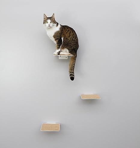 Escaleras para gatos - Escaleras con almohadillas de corcho - Juego de 3 - Muro de escalada individual para gatos de hasta 10 kg - Niveles de escalada ...