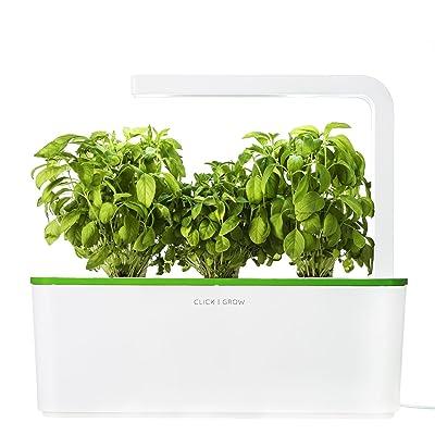 click u0026 grow indoor smart fresh herb garden kit with 3 basil cartridges u0026 kiwi green