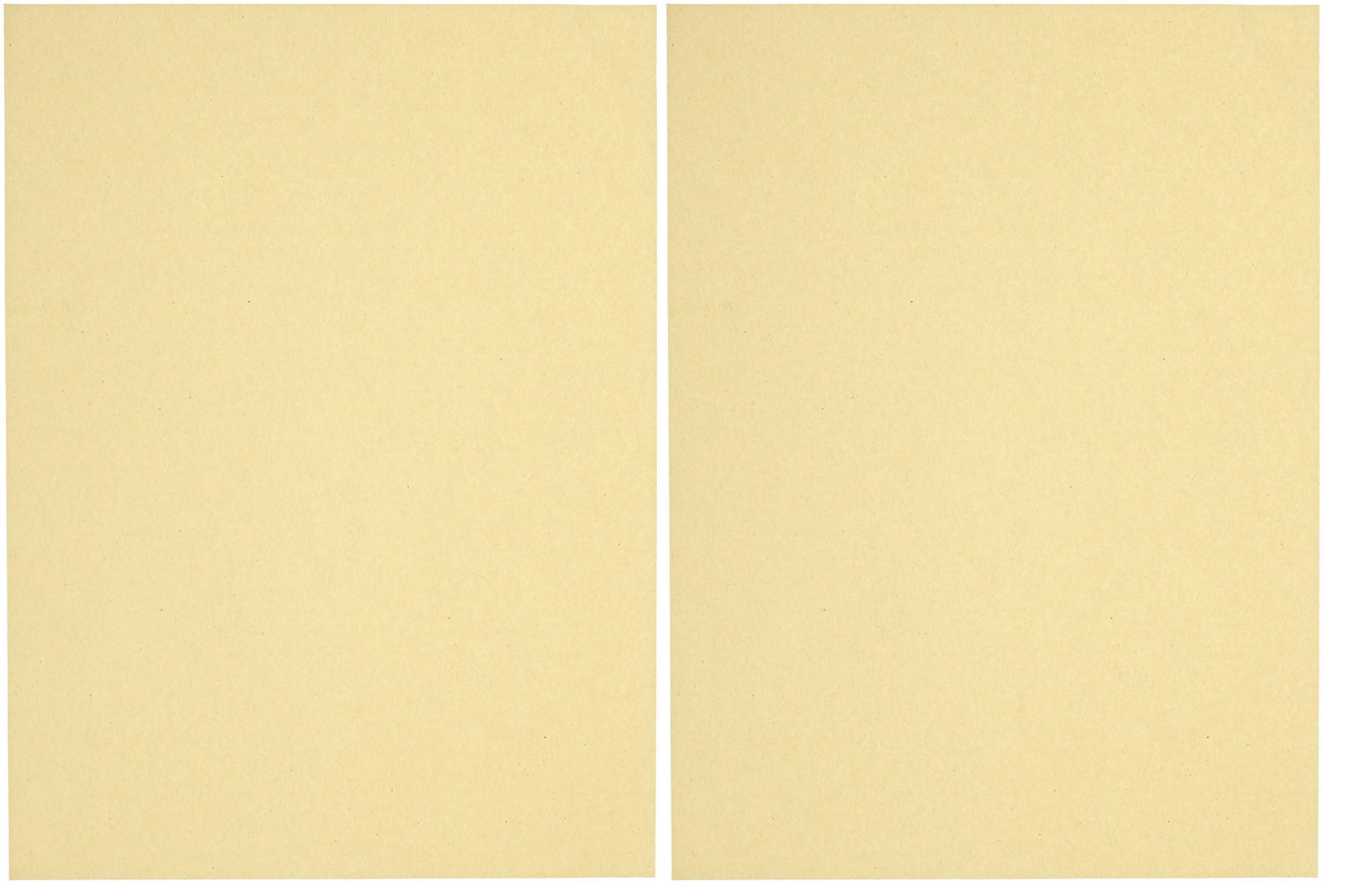 Sax Multi-Purpose Drawing Paper, 56 lbs, 9 x 12 Inches, Manila Cream, Pack of 500 (2-Pack)
