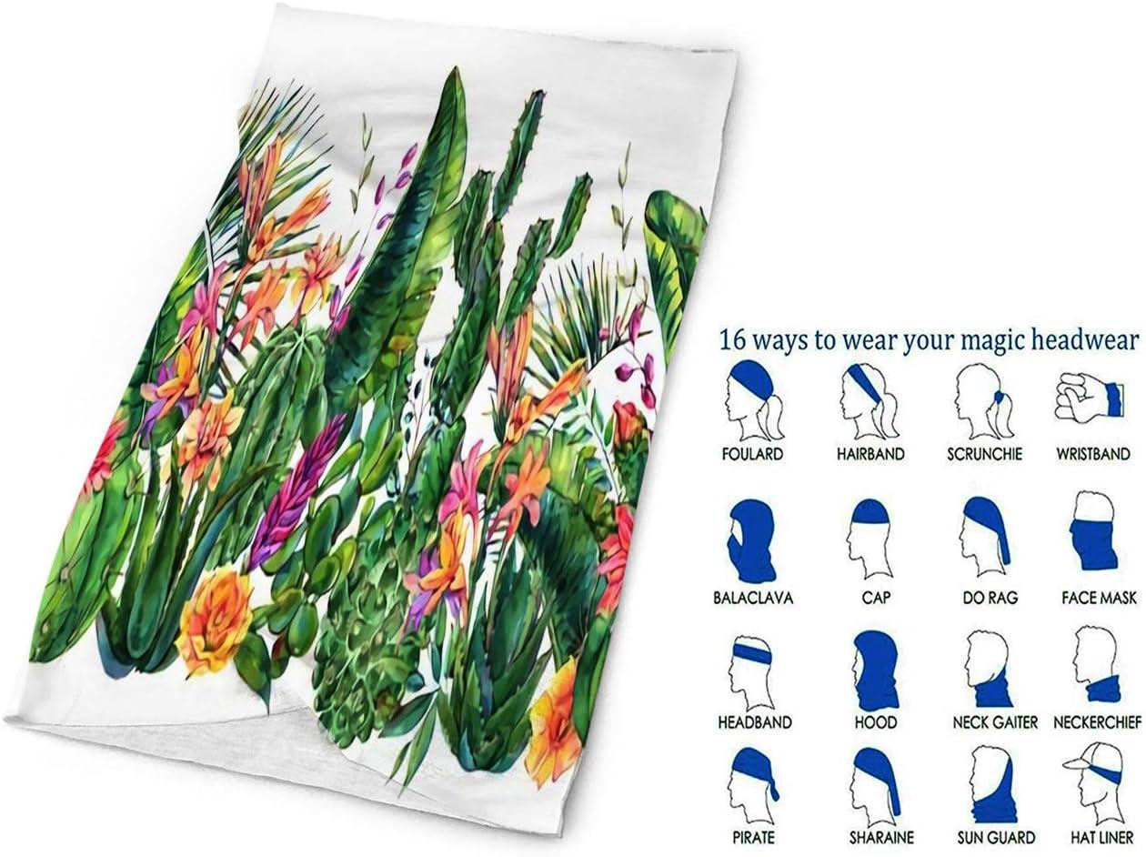 Magic Headwear Free Cactus Outdoor Scarf Headbands Bandana Mask Neck Gaiter Head Wrap Mask Sweatband