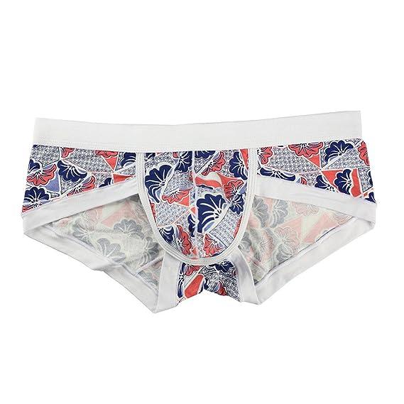 Cebbay Ropa Interior de los Hombres de Liquidación Elástico Boxer Cómodo Breathable Briefs 5PC (Multicolormedium