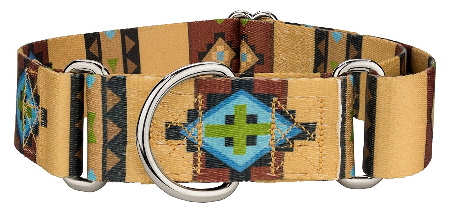 (Large, 3.8cm Wide, Native Arizona) Country Brook Design 3.8cm Martingale Dog Collar Country and Western