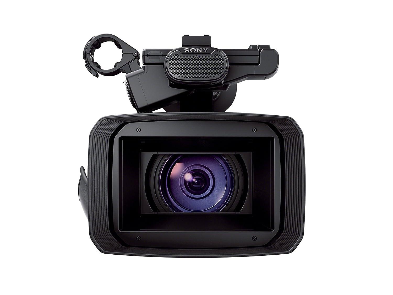 Amazon.com : Sony FDRAX1 4K Camcorder Video Camera with 20x ...