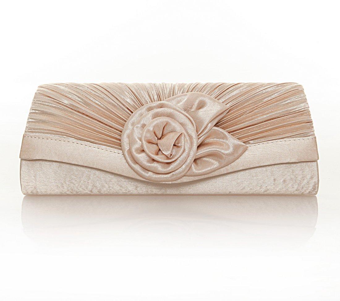 Damara Women's Satin Pleated Flower Front Evening Bag Clutch Handbag (Champagne)