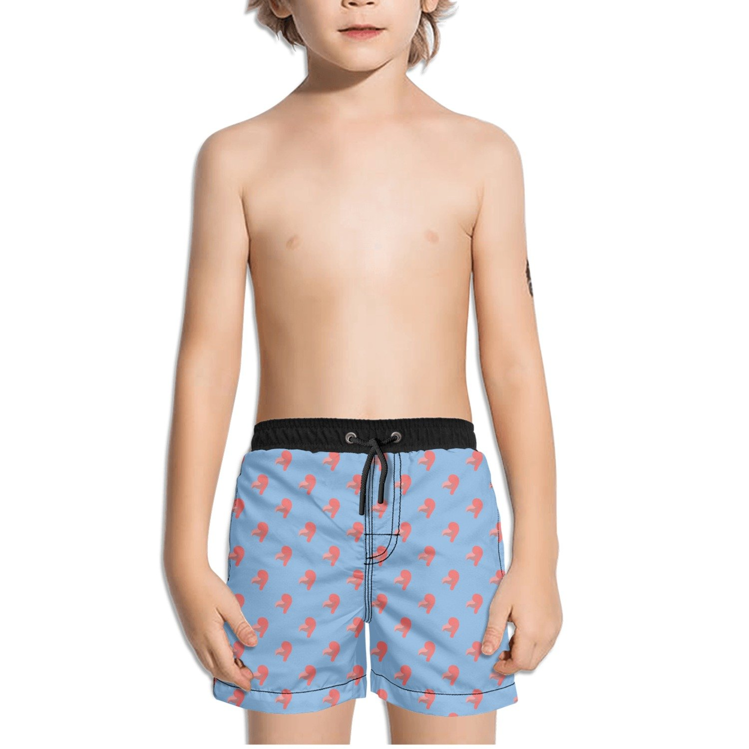 Trum Namii Boys Quick Dry Swim Trunks Pink Flamingo Head Heart Blue Background Shorts