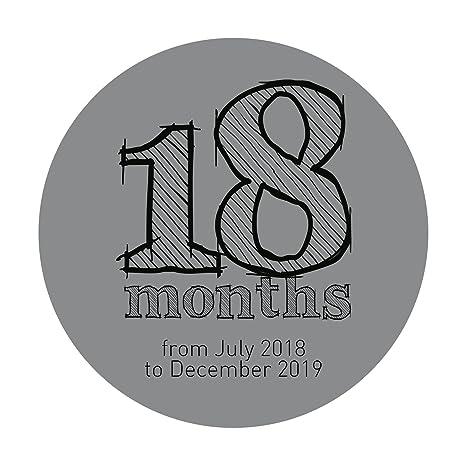 Amazon.com : Finocam 636100219 - Agenda 18 Months 2018 ...
