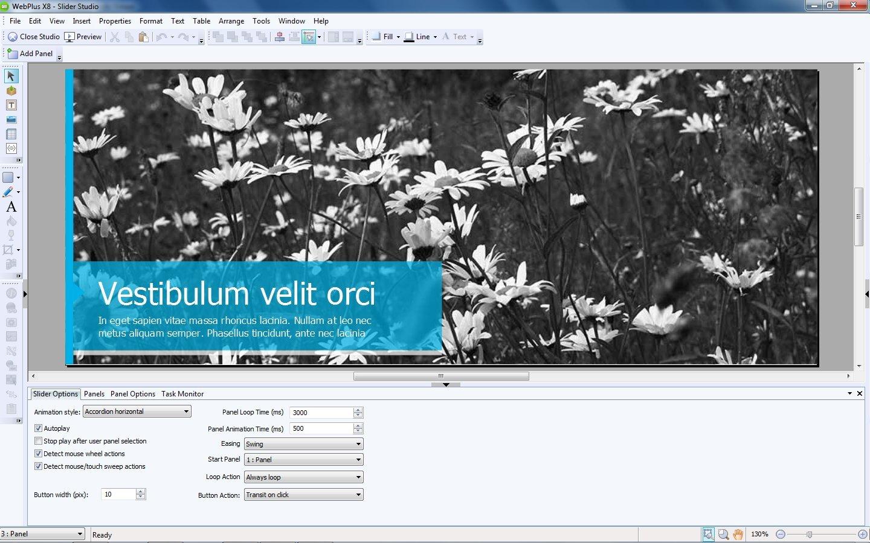 Serif Software WebPlus X8: Amazon.ca: Software