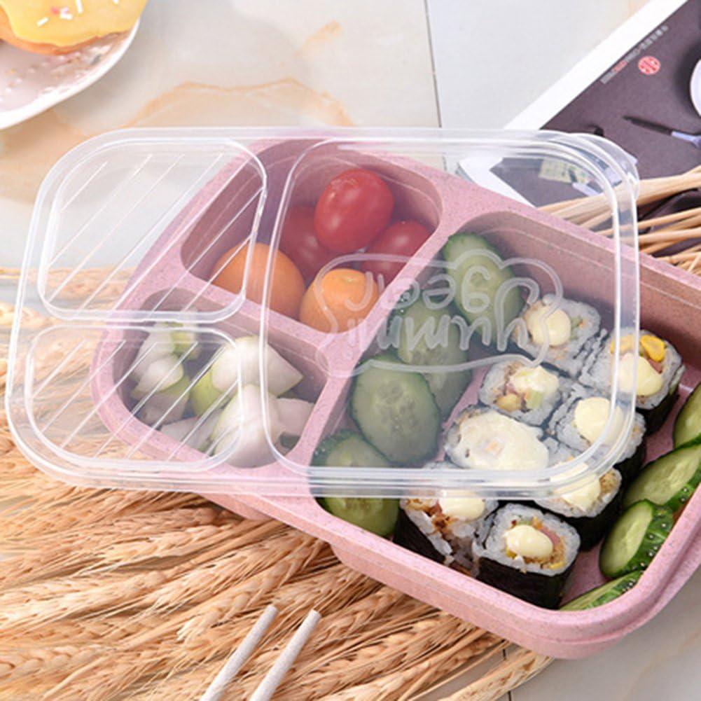 3 compartimentos picnic azul contenedor de almacenamiento de alimentos PP para ni/ños y adultos Longyitrade 1 fiambrera para comida