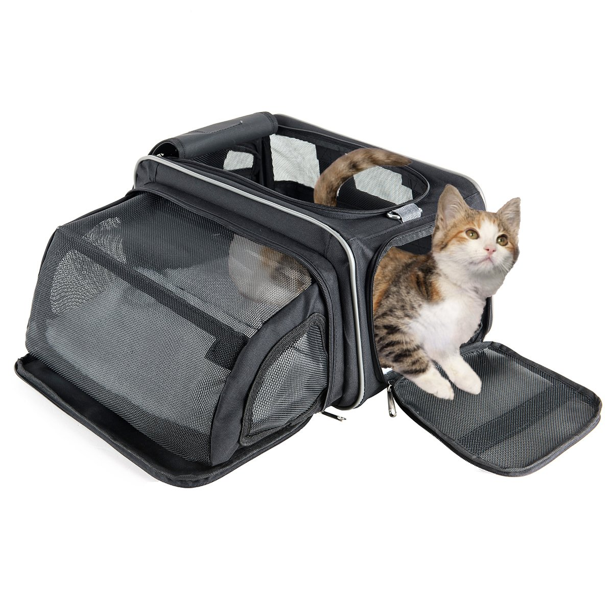 Transportín gatos