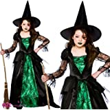 Smaragd Witch (Deluxe) - Kinderkostüm