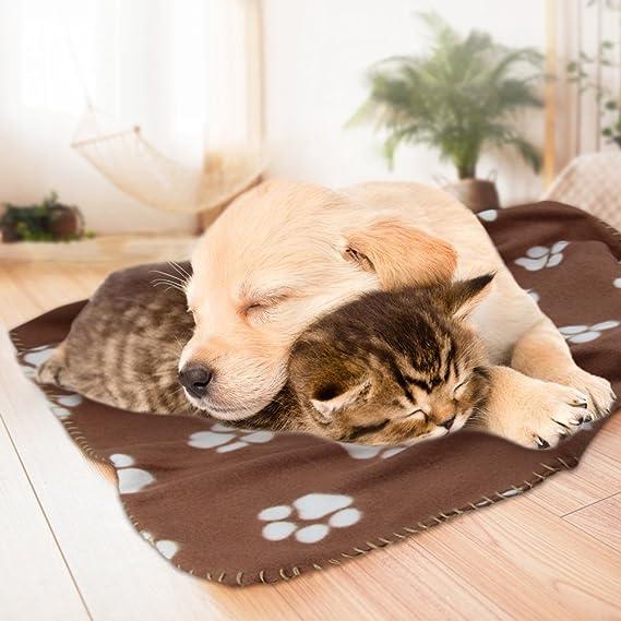 Comsmart Manta de forro polar para mascotas, cálida, con estampado de huellas y manta suave para cachorro de gato y otros animales pequeños: Amazon.es: ...