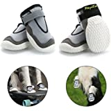 RoyalCare Paw Protector Dog Boots, Set of 4 Breathable Hole and Skid-proof Dog Shoes for Large Dogs in Hot Summer 8#