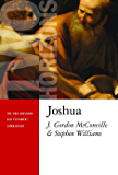 Joshua (The Two Horizons Old Testament Commentary)