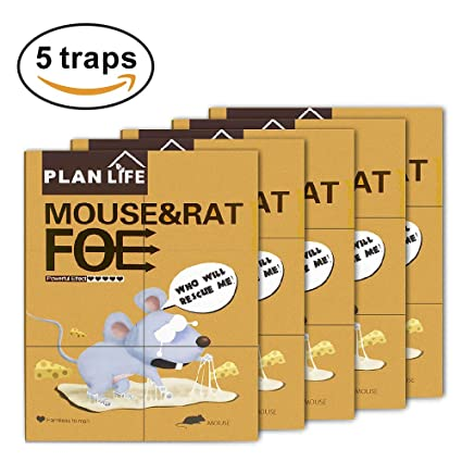 Sticky Glue Mouse trap