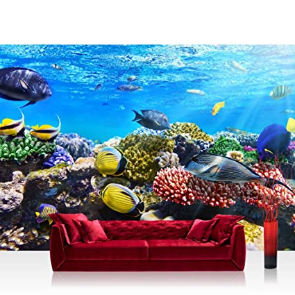 Amazon Photo Wallpaper