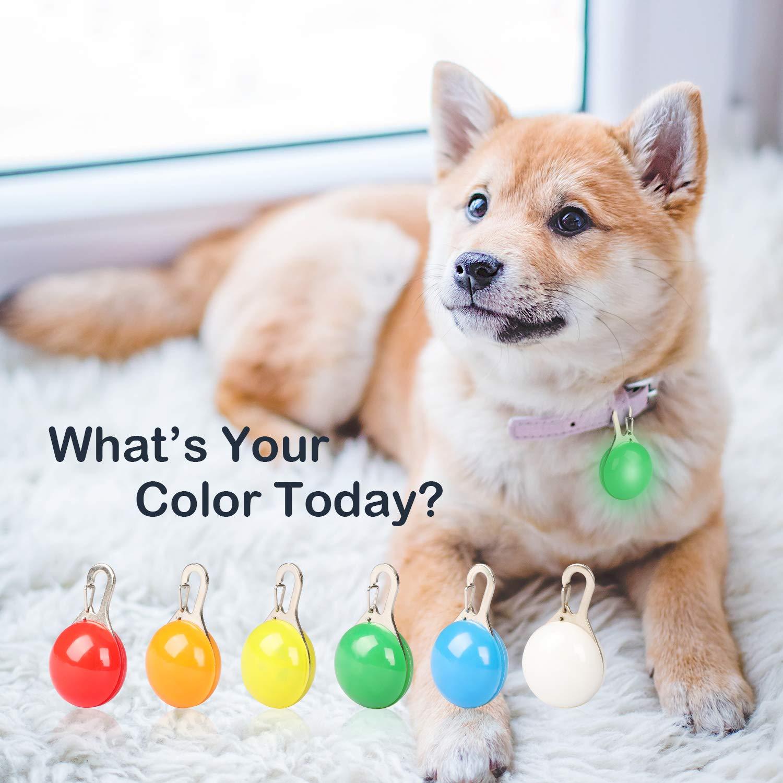 Collar LED Perro, Luz Collar Luminoso Perro - MENNYO 6 Luces de Colores de Seguridad Luminoso Impermeable para Mascotas por Caminar por la Noche, 6 Pilas + 6 Pilas de Repuesto, Regalos para mascotas