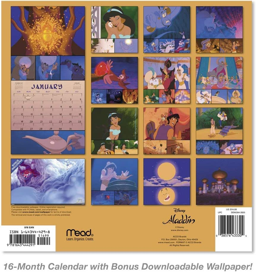 Amazon Com 2020 Disney Aladdin Wall Calendar Ddw2842820 Office Products